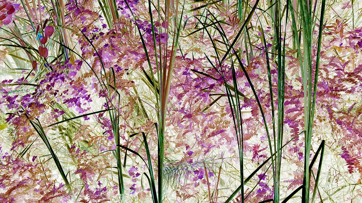 Digital color manipulation (0066)