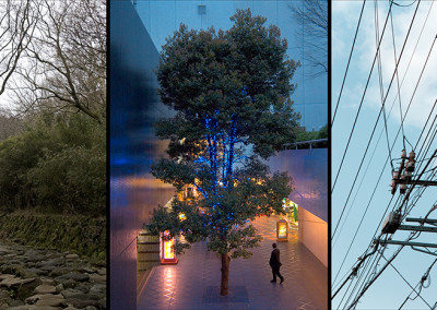 Triptych C