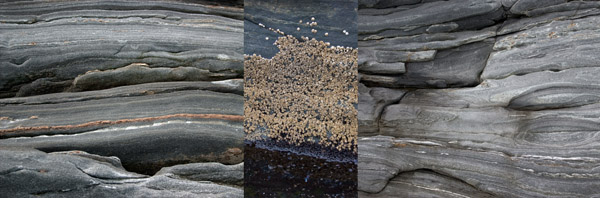 maine-coast-triptych_0156