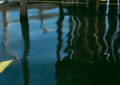 pier-with-algae_0651